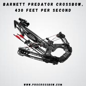 Barnet Predator - Best for pig hunting