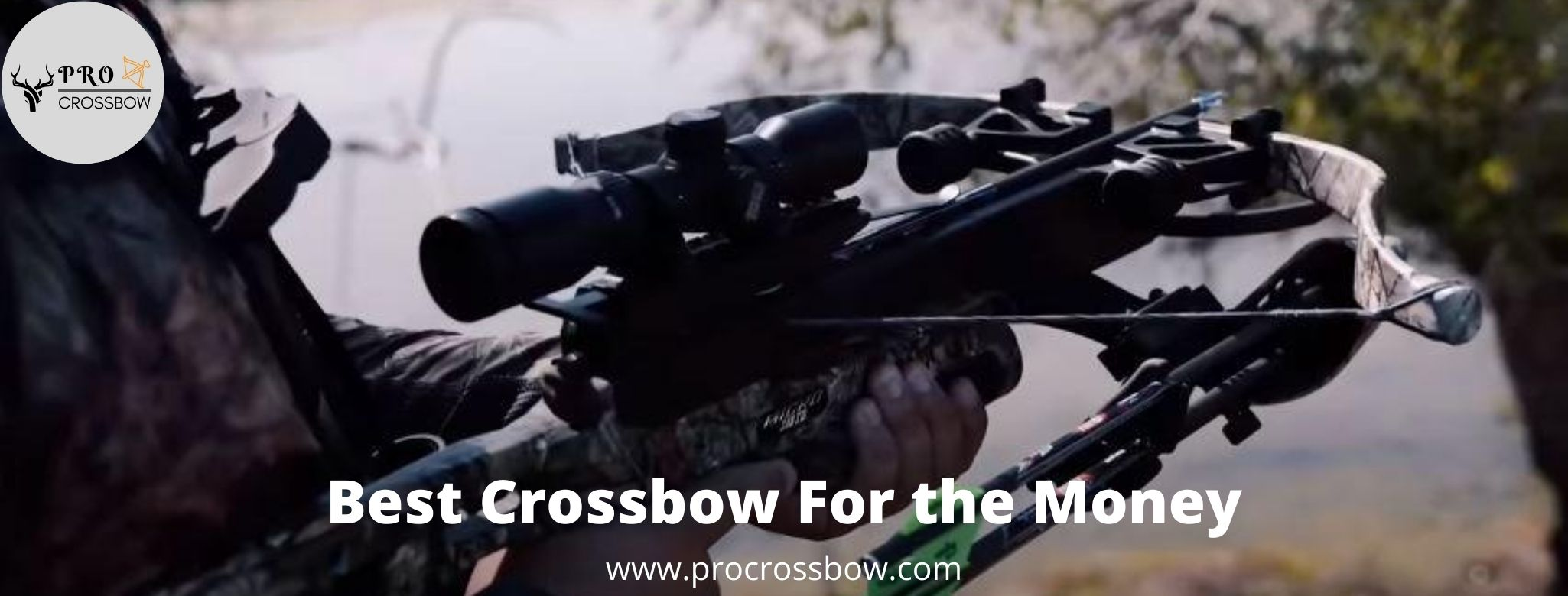 best crossbow for fish