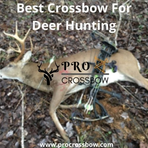 best deer hunting crossbow reviews and buyer's guide