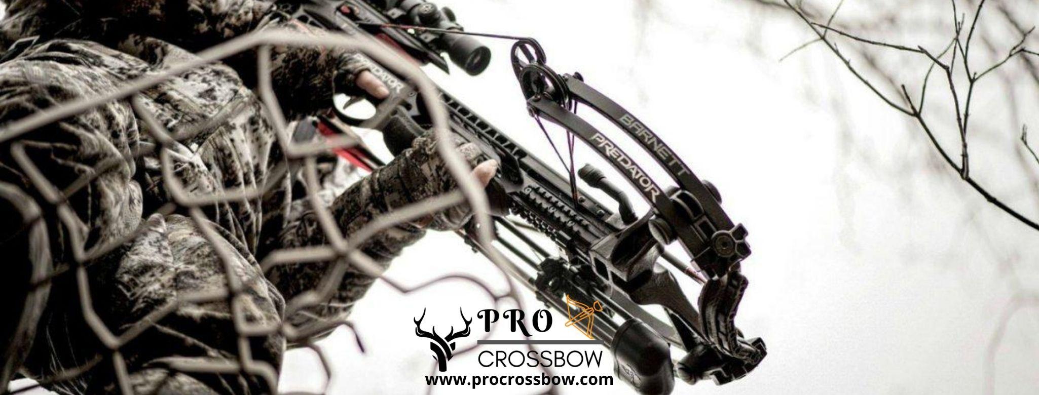 best crossbow for black bear hunting