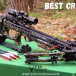 Best Crossbow 2021 - In Depth Reviews & Buying Guide | Procrossbow.com
