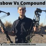 Crossbow Vs Compound Bow | Which Is Best For Professional Hunters