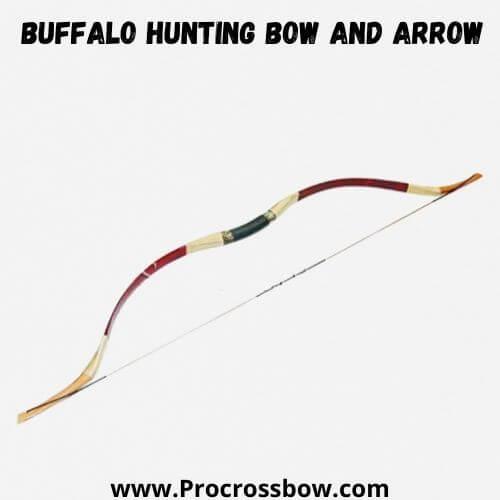Buffalo Hunting Bow and Arrow